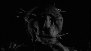 DWP-Scarecrowhead-cap